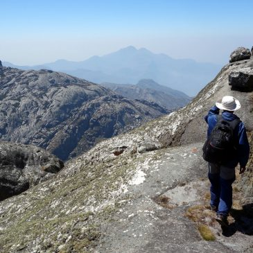 3 Day Mulanje Mountain Trekking – Sapitwa RouteFrom: $ 250.00