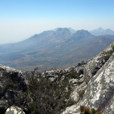 2 Day Mulanje Mountain Trekking – Lichenya ForestFrom: $ 135.00