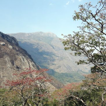 4 Day Mulanje Mountain Trekking – Chilemba RouteFrom: $ 340.00
