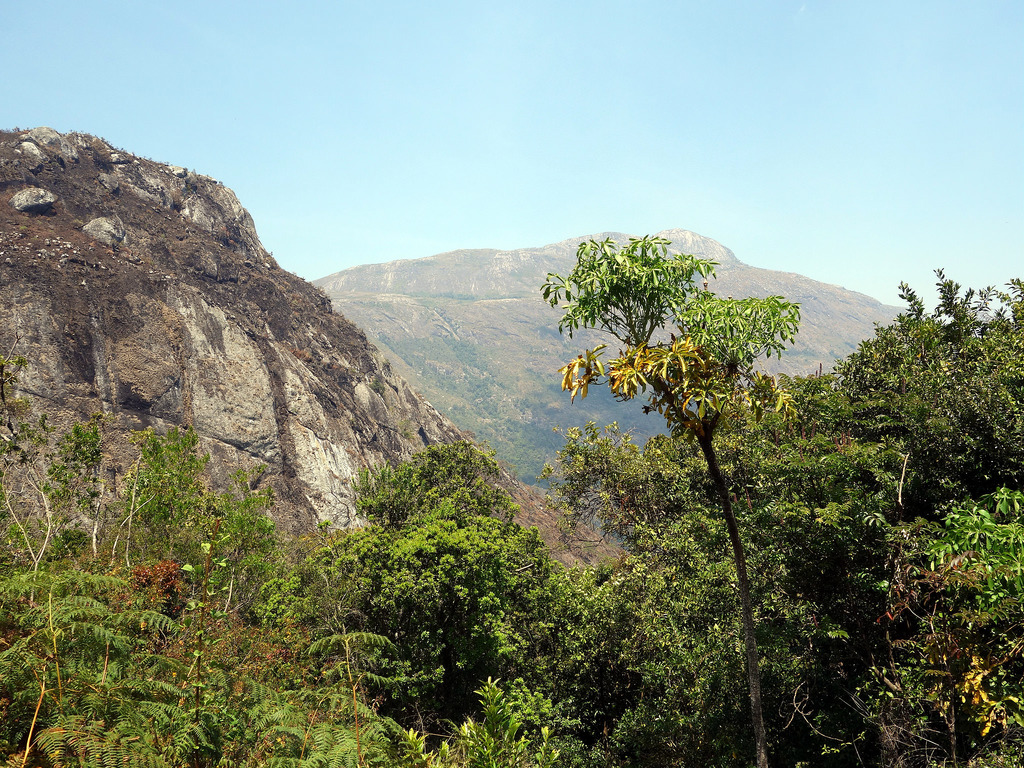 Earth Safari Malawi Mulanje mountain walking trekking 15