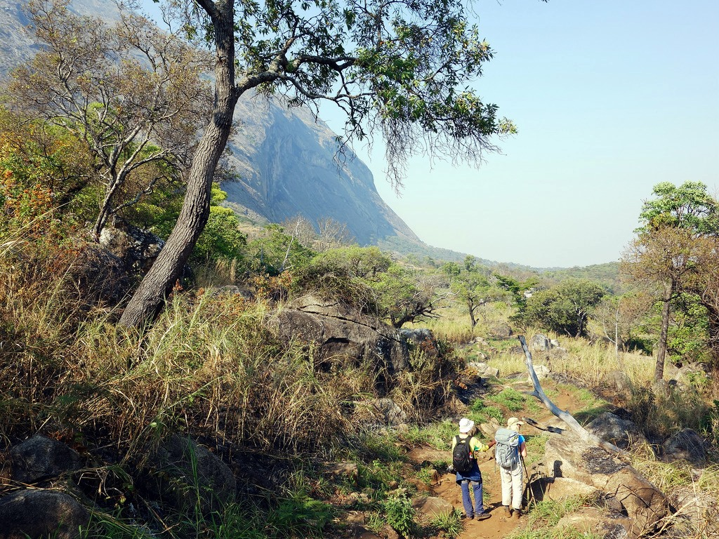 Earth Safari Malawi Mulanje mountain walking trekking 14
