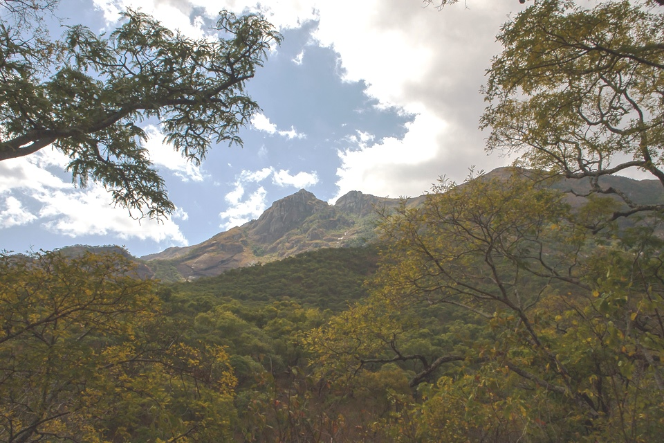 Earth Safari Malawi Mulanje mountain walking trekking 11