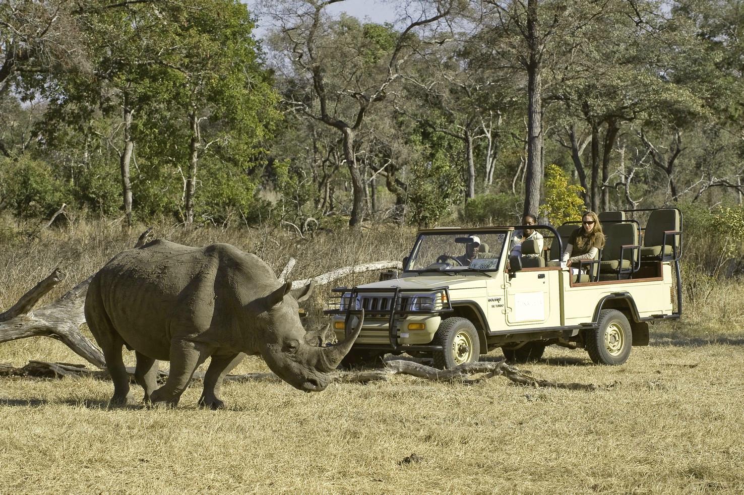 Earth Safari – Zambia – Mosi-Oa-Tunya National Park