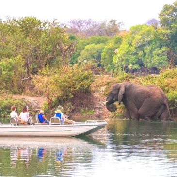 6 Day – Kafue National Park camping$ 1300.00